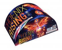 PHOENIX RISING (500 GRAM)