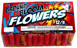 GROUND BLOOM FLOWERS 72's