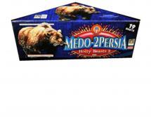 19 SHOT MEDO-PERSIA