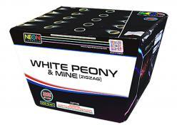 25 SHOT WHITE PEONY