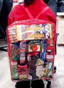5005 Fireworks Backpack